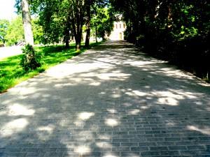 Zilu_ielas_bruga_seguma_rekonstrukcija_1